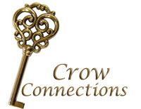 connect-crow.jpg